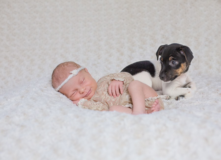 Babyfotografie Celle-18